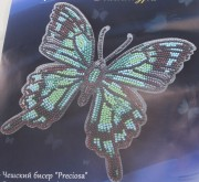 Бабочка Палинура